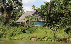Urwaldhütte am Fluss