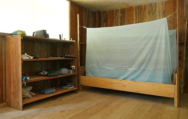 So schläft man im Urwaldhaus