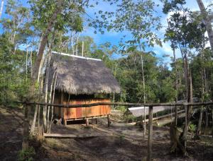 Urwald Peru Camp Hütte
